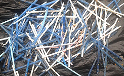 cotton-buds-collected