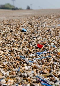 Plastic cotton buds pollute beach
